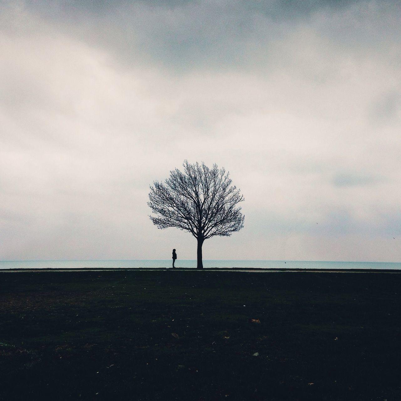 Solotree