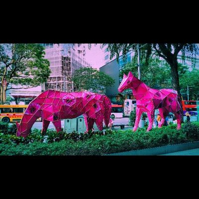 Year of the horse Yearofthehorse Chinese ASIA
