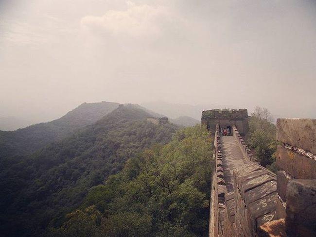 Thegreatwall Travel Traveling China Awesomeplace Globetrotter Globetrotting Wanderlust Nature Trees
