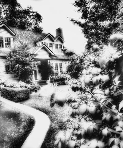 B&W House Classic. Architecture Building Exterior Built Structure Tree No People Outdoors Day Sky Close-up Garden Photography Cityscape Illuminated Suburban Exploration Breathing Space