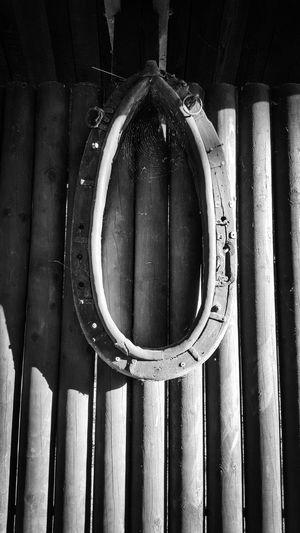 Old horse-collar Blackandwhite B&w Photography No People Ostrava Czech Republic Horse Collar Spider Web Samsung Galaxy S6 B&w Photo Zoo Ostrava