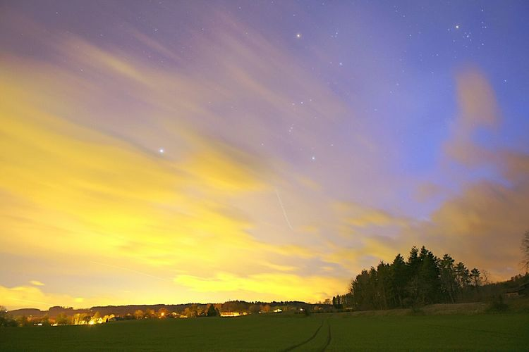 Night Sky Night Lights Landscape Switzerland Nikon Taking Photos Nikonphotography Nightphotography Nikonphotographer Nikon D750 JO-LPHOTO Gimel, VD Tree Sky It's Cold Outside Stars Colors