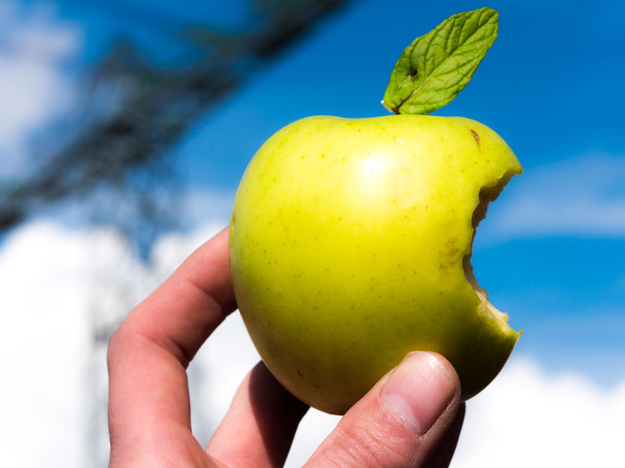 Cropped Image Of Hand Holding Eaten Granny Smith Apple