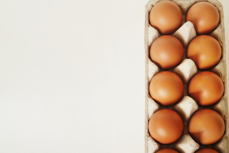 Egg Shell Tray