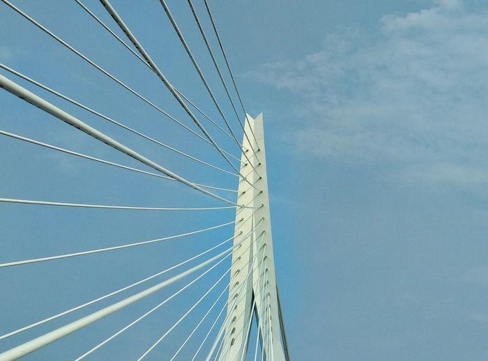 Low angle view of erasmus bridge against sky in rotterdam