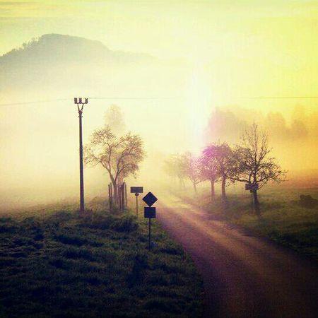 good morning world! Good Morning