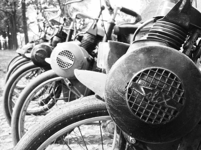 Solex Bike Transportation Mode Of Transport Land Vehicle Day Outdoors No People Tire Close-up Tree The Street Photographer - 2017 EyeEm Awards