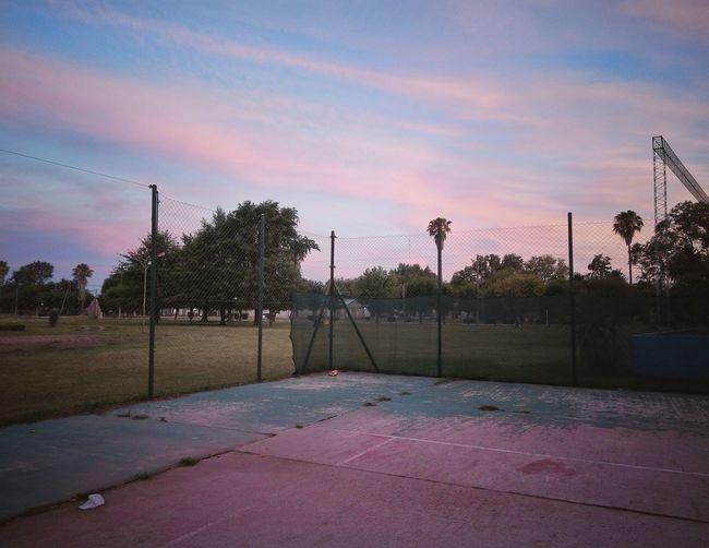 Soccer Tree Cloud - Sky Sky Playing Field Sport No People Colour Your Horizn EyeEm Best Shots EyeEm Selects NewEyeEmPhotograph EyeEm Best Edits MyfirstEyemphoto Tenniscourt