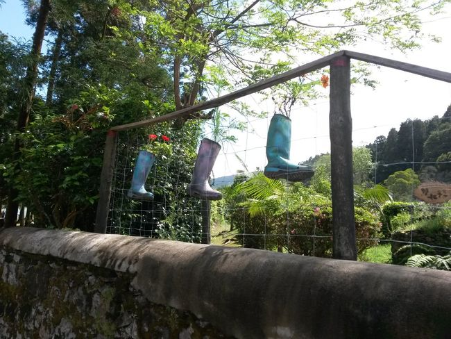 Difference  Boots Are Made For Walking Rain Boots Garden Art Azores, S. Miguel