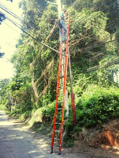 Electrician  Professional Thailand
