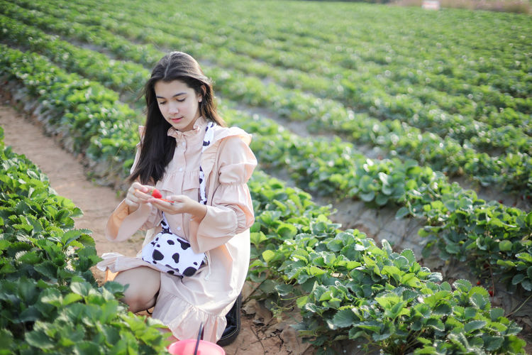Young woman holding ice cream in farm