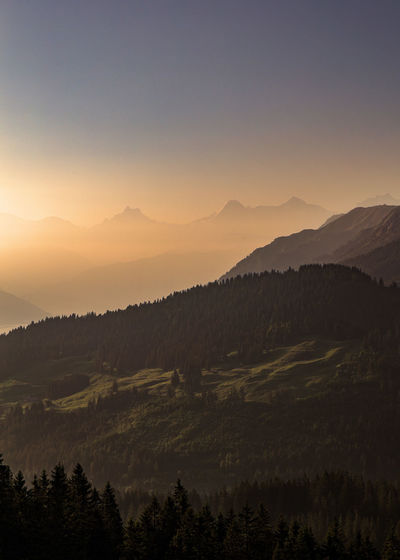 Beauty In Nature Eiger Eiger Moench Jungfrau Environment Growth Hazy  Idyllic Jungfrau Land Landscape Mountain Mountain Range Nature No People Non-urban Scene Outdoors Plant Remote Scenics - Nature Silhouette Sky Sunset Tranquil Scene Tranquility Tree