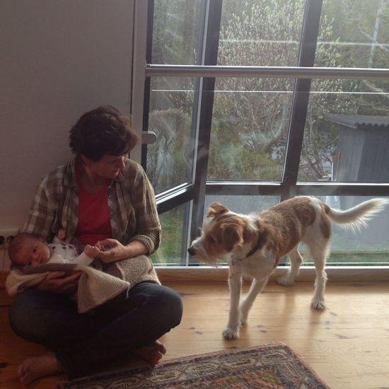 Socializing Enjoying Life Baby Kromfohrlander