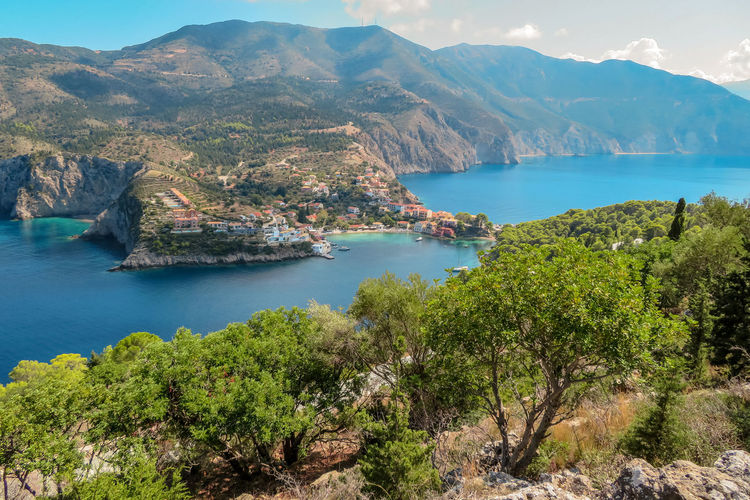 Stunning view with olive tree in the foreground Water Mountain Scenics - Nature Beauty In Nature Tranquil Scene Tranquility Nature Sea Day Plant Tree Mountain Range High Angle View Land No People Non-urban Scene Outdoors Idyllic Turquoise Colored Bay Formation