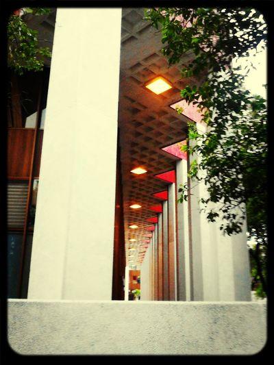 Urban Geometry Guadalajara Jalisco Code