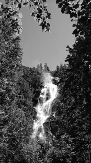 Scenic view of waterfall against sky in forest