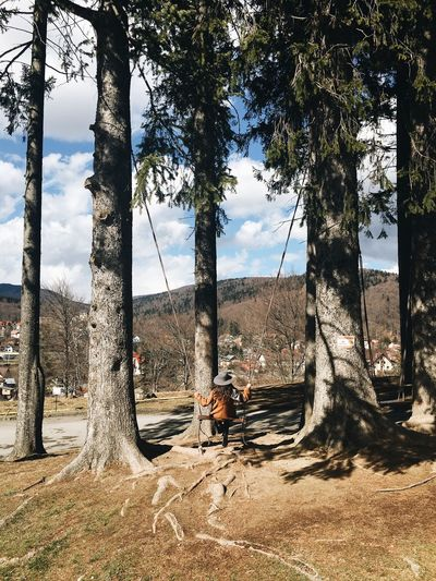 Girl on swing amidst trees during sunny day