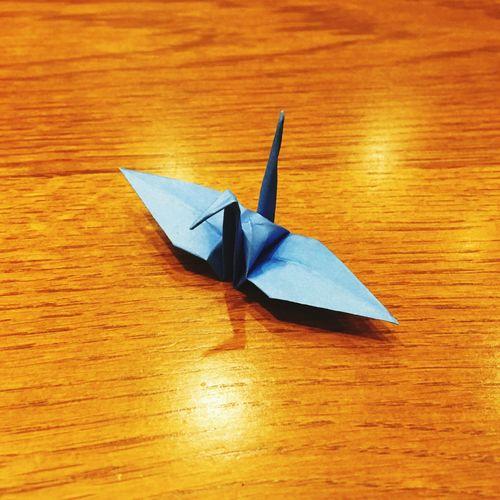 千羽鶴 One Thousand Folded Paper Cranes 折り紙 Folding Paper