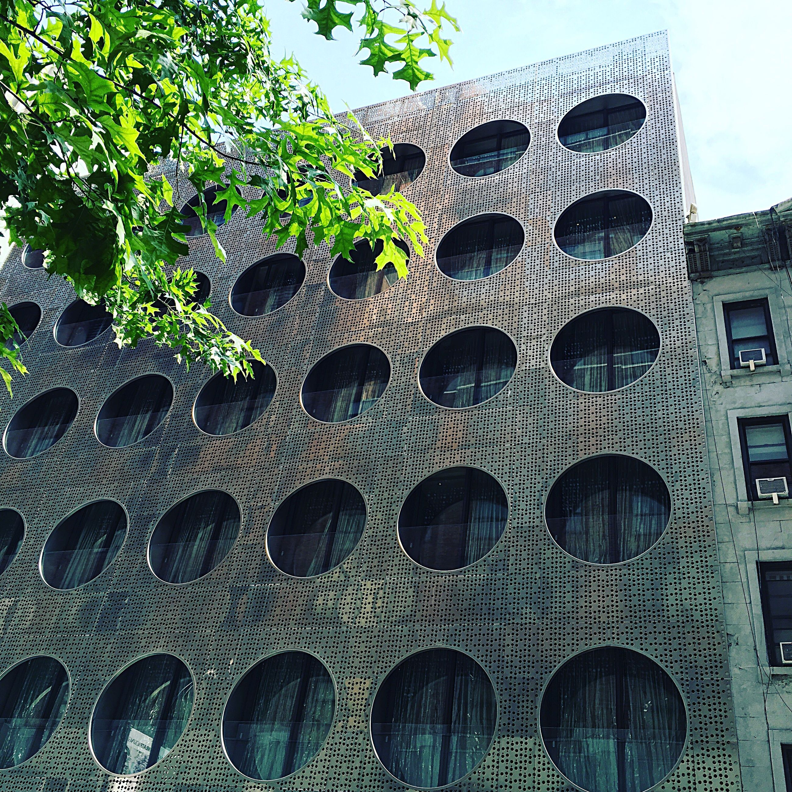 architecture, building exterior, built structure, low angle view, pattern, sky, arch, tree, window, in a row, day, outdoors, no people, repetition, building, growth, design, sunlight, architectural feature, roof
