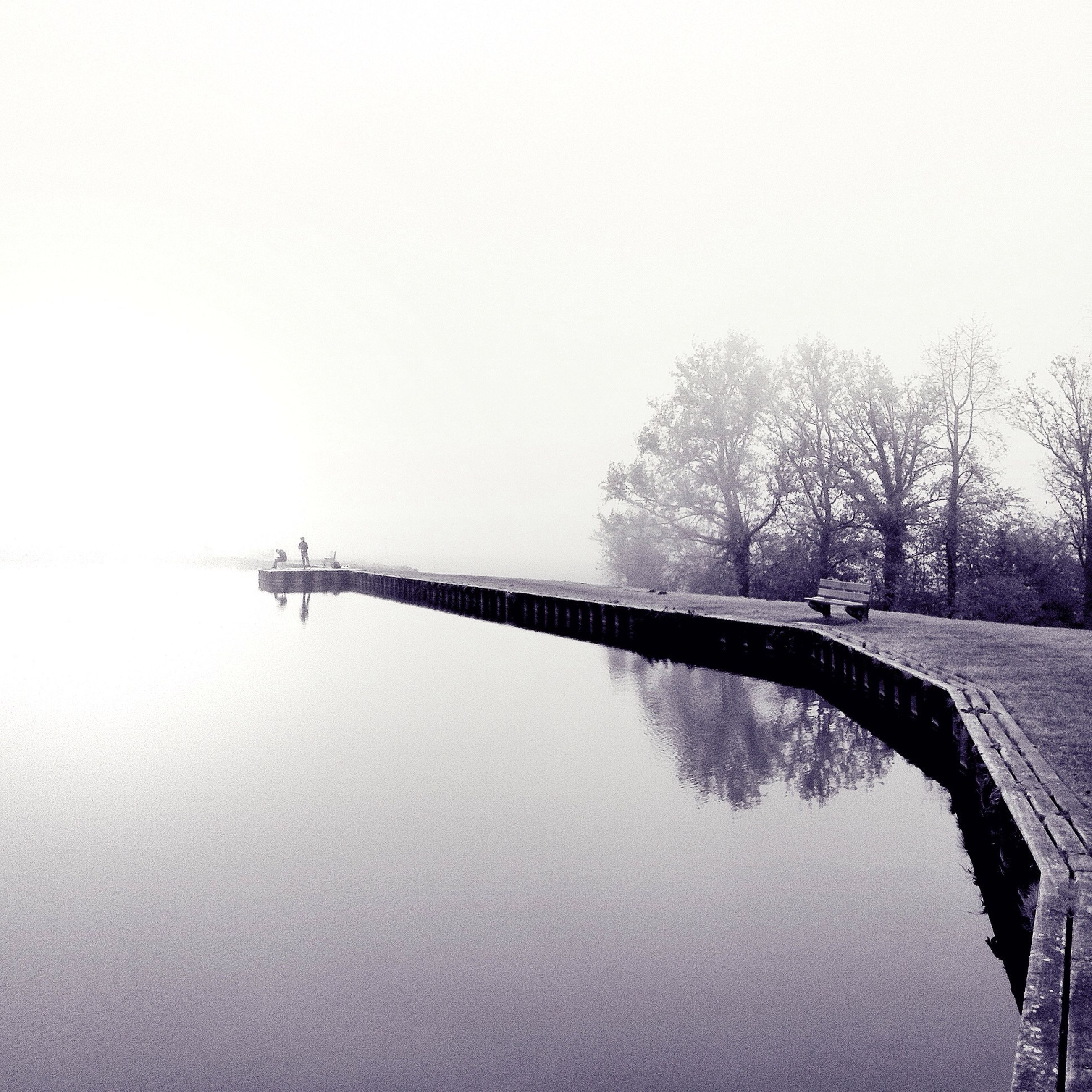 clear sky, tree, connection, water, copy space, built structure, bridge - man made structure, architecture, tranquility, river, nature, tranquil scene, bare tree, waterfront, foggy, outdoors, day, no people, sky