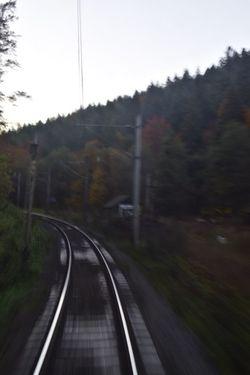 Motion Connection The Way Forward Rail Transportation Electricity Pylon Transportation Tree Cable Nature Outdoors Landscape