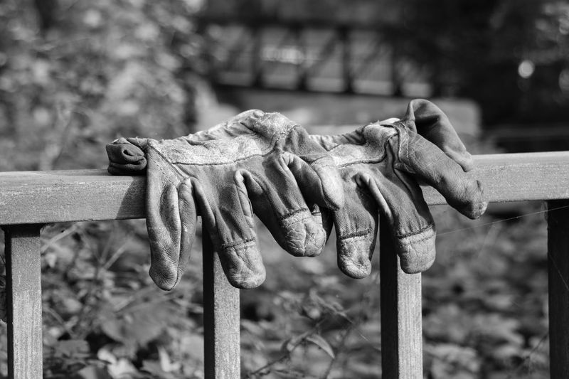 Close-up of gloves drying on railing