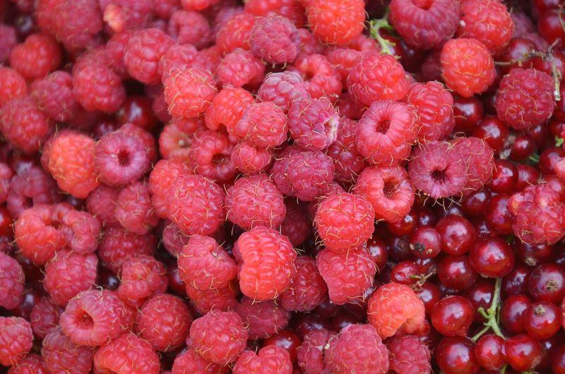 Raspberries. ЯПеда Food The Foodie - 2015 EyeEm Awards Red Raspberries Berries Village Harvest малина ягода-малина ягоды Be. Ready. Raspberry Berry