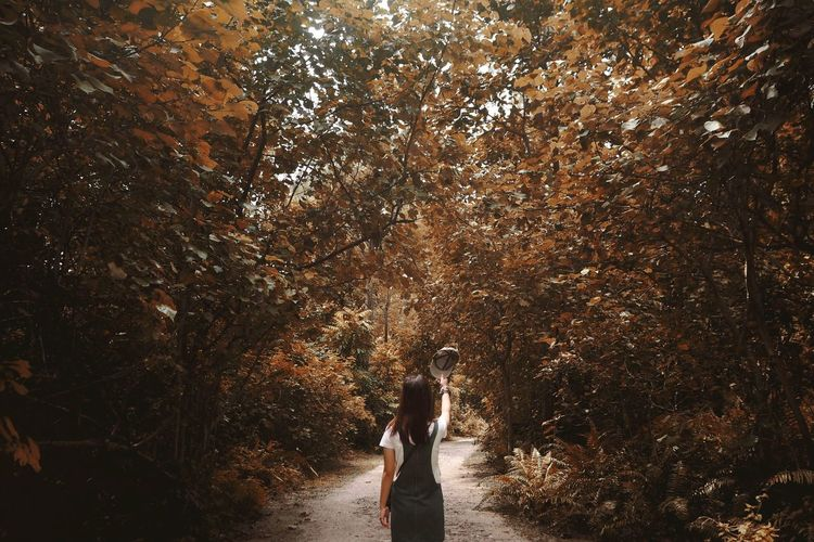 Nature Autumn Autumn colors Nature Autumn Autumn Leaves Autumn🍁🍁🍁 Autumn Collection Forest Forest Photography Forestwalk Trees Nature Photography Nature Golden Gold Tree Standing Women Water Fall Leaves Autumn Mood