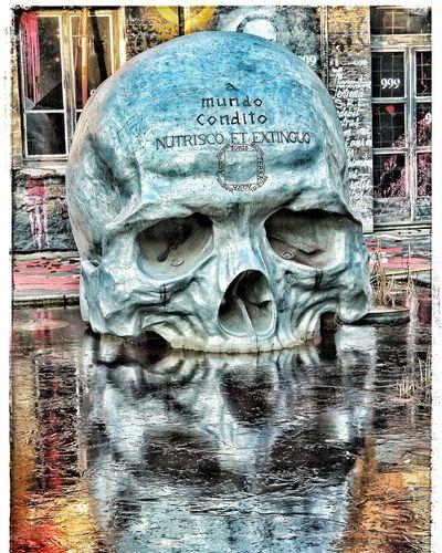Skull And Reflets l La Demeure Du Chaos