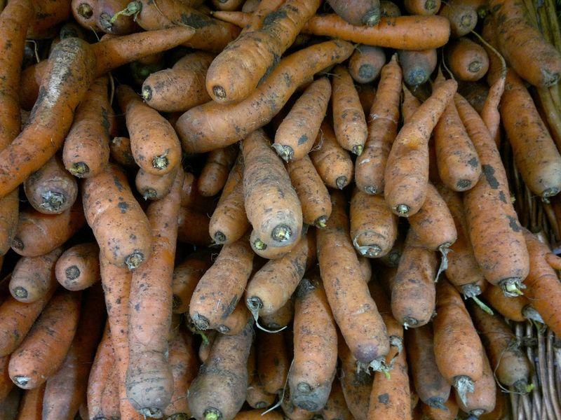 Organic Food Organic Markets Organic Vegetables Food Carrots