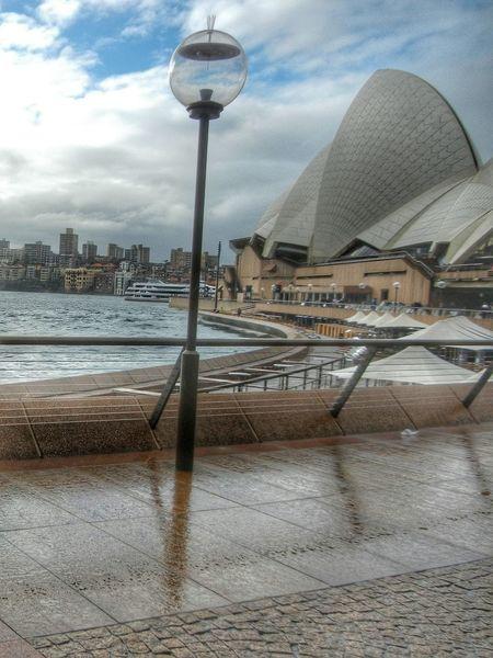 The Architect - 2016 EyeEm Awards Sydney Opera House Sydney Australia Wet Day Refelections Sydney Harbour