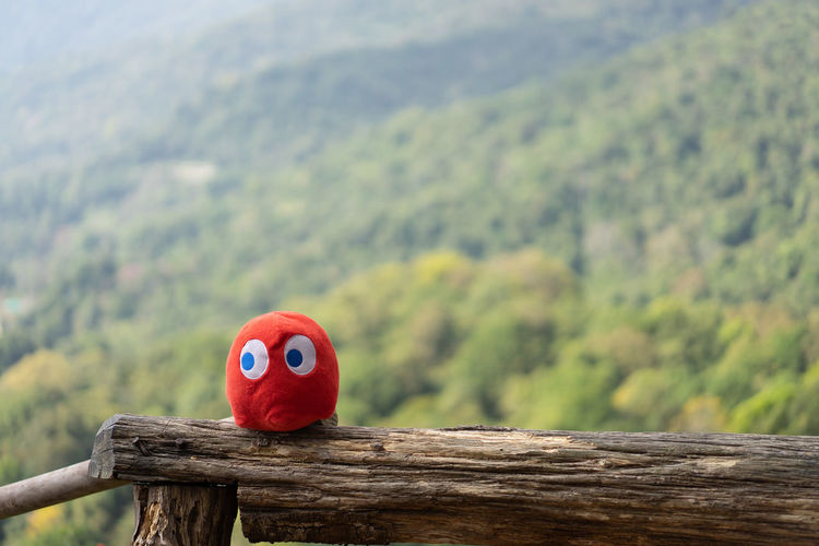 Close-up of red toy on wooden railing against mountains