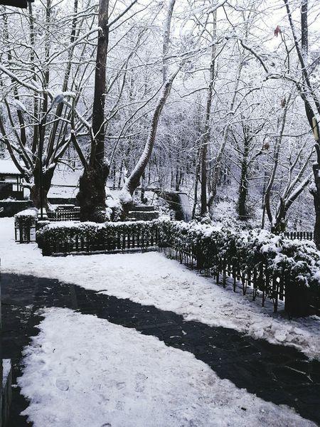 Snow ❄ Kar Doğa Sanat