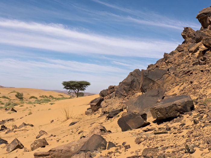 Rock Scenics - Nature Land Rock - Object Landscape Arid Climate Desert Rock Formation Tranquility Beauty In Nature Climate Nature Solid No People Outdoors Morocco Hiking Sahara Sand Tafraout Wanderlust Africa Eroded Physical Geography Environment