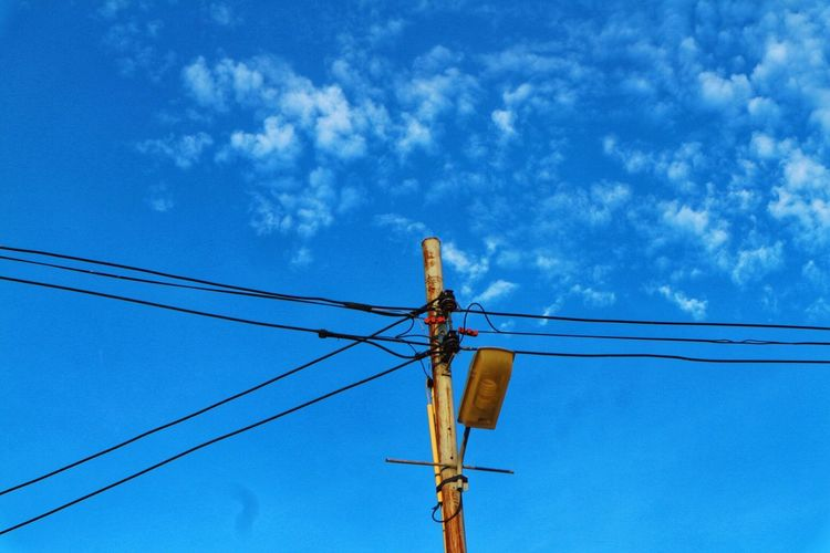Cable Low Angle View Connection Power Line  Blue Power Supply Electricity  Day Technology Fuel And Power Generation Outdoors No People Animals In The Wild Sky Electricity Pylon Bird Animal Themes
