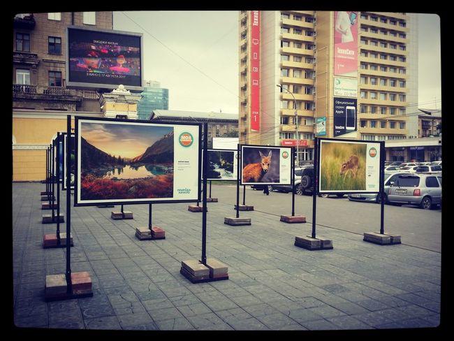 Фотовыставка Siberia утро сибирь Novosibirsk City Новосибирск Novosibirsk выставка искусство Streetphotography Street улица