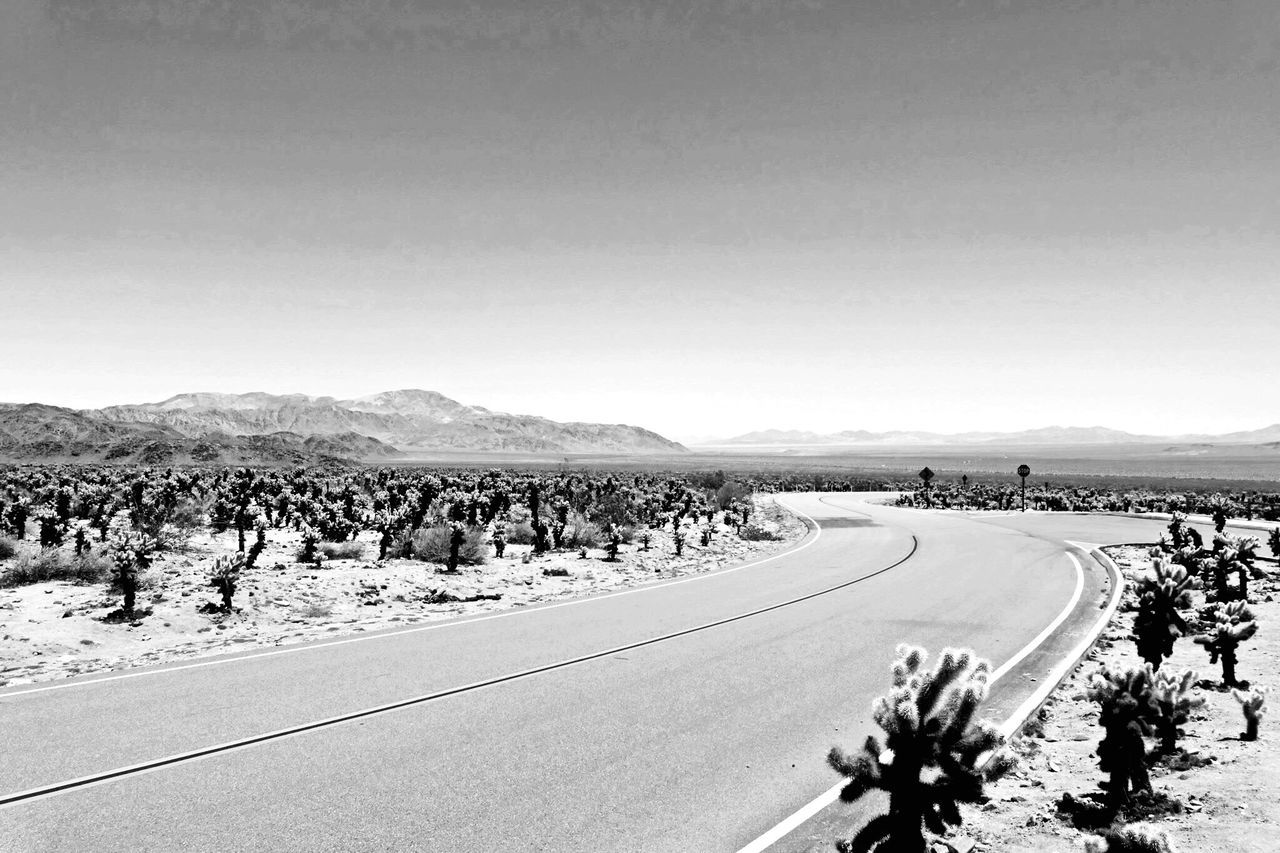 road, mountain, nature, transportation, landscape, outdoors, day, copy space, scenics, clear sky, tranquil scene, the way forward, beauty in nature, tree, sky, large group of people, people