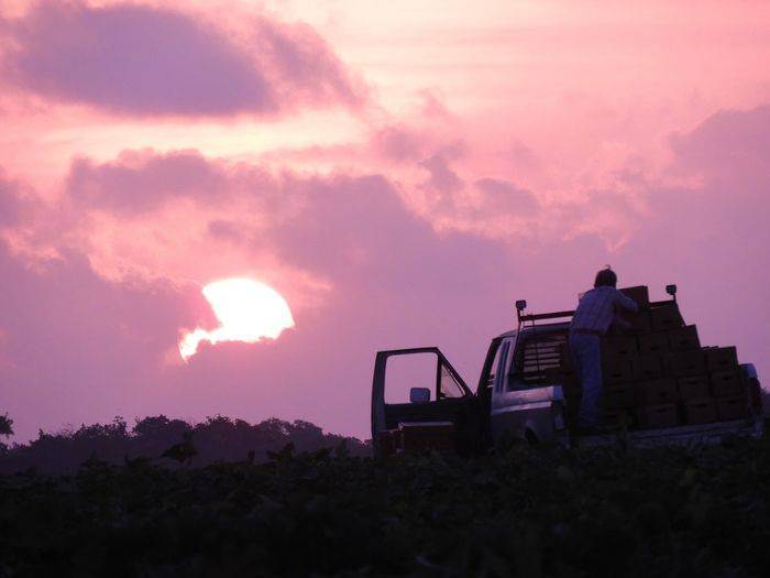 Silhouette Man Standing On Off-Road Vehicle Against Cloudy Sky During Sunset
