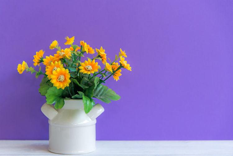 Close-up of flower vase against blue background
