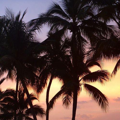 закаты бывают разные.... Только мы сейчас здесь, а пальмы -там...ностальгия воспоминания  путешествия туризм Тайланд sunset nostalgia holiday tourism travel Thailand