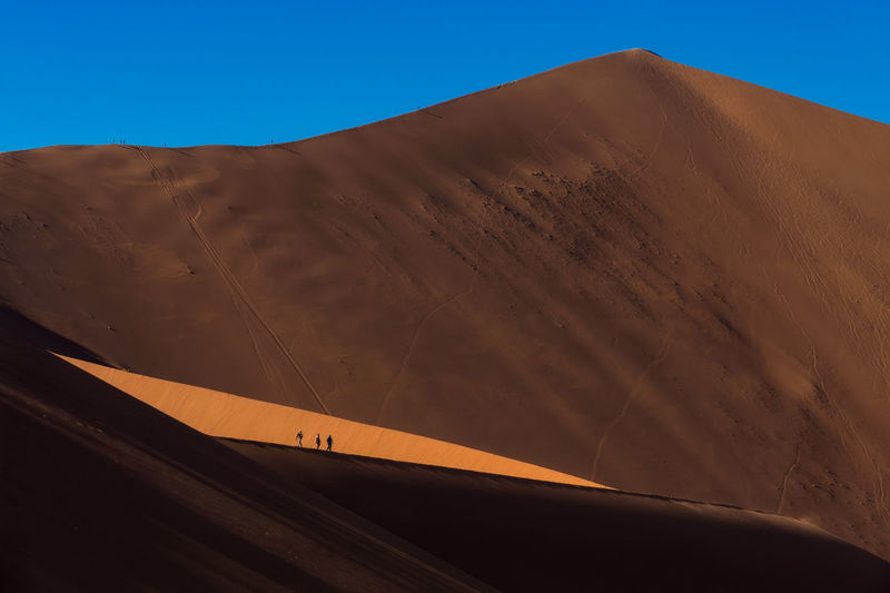 Big Daddy dune Arid Climate Brown Clear Sky Day Desert Landscape Mammal Nature No People Outdoors Sand Sand Dune Sky