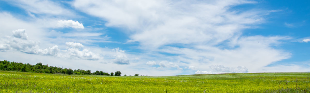 Tranquil scenic view of green grass field and white cloudy sky Agriculture Background Beautiful Blue Cloud Clouds Country Countryside Day Environment Farm Field Grass Grassland Green Happiness Hill Horizon Idyllic Land Landscape Meadow Natural Nature Outdoor Outdoors Panoramic Pasture Peaceful Plant Rural Scene Scenery Scenic Season  Sky Spring Summer Sunny Tranquil Travel View Wallpaper Weather White Yellow