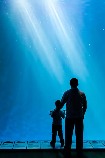 Rear view of father and son standing against aquarium