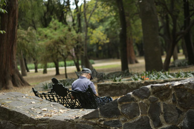 Senior man sitting on bench in park