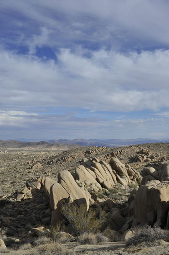 Animal Shapes California Desert Landscape Nature Outdoors Sky Stones