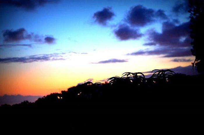 Hawaiinei 808  Pacific Hawaii Outdoors Explore Adventure Nature Optoutside Travel Home