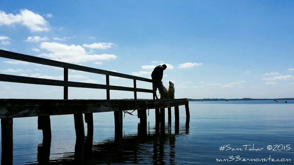 Nature On Your Doorstep Dog Love Capture The Moment Lake Learn & Shoot: Leading Lines Eyeemgallery Silhouette The Great Outdoors - 2015 EyeEm Awards The Portraitist - 2015 EyeEm Awards Summer Dogs THESE Are My Friends Light And Shadows