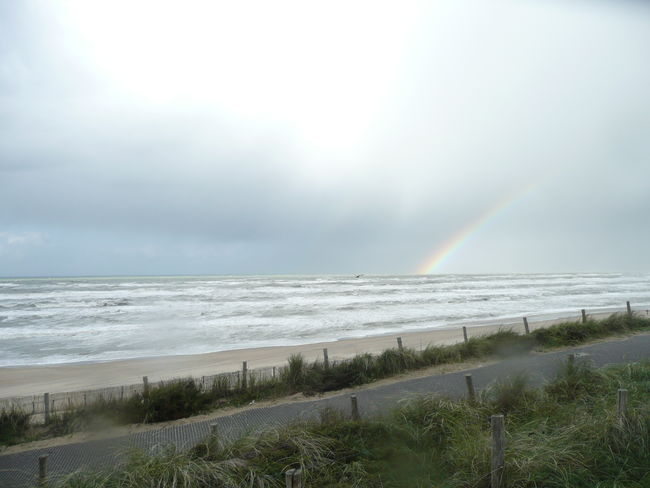 Beach Beauty In Nature Cloud - Sky Clouds Flying Seagull Grey Stormy Clouds Horizon Over Water Nature Outdoors Rainbow Rainbow Over Ocean Sand Scenics Sea Sky Stormy Sky Water Wave