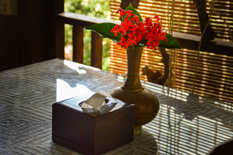 Flower Vase Table No People Indoors  Day Close-up Red Santan Red Santan Table Setting Summer Vacation Lifestyles Interior Design Vibrant Colors Color Contrast Simplicity Red Santan Flower Red Flower