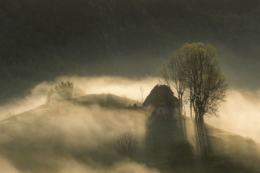 foggy morning in Apuseni Mountains Light Beauty In Nature Day Fog Hazy  House Landscape Mist Nature No People Outdoors Scenics Shadows Sky Sunrise Tranquility Tree